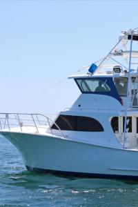 boat windscreens